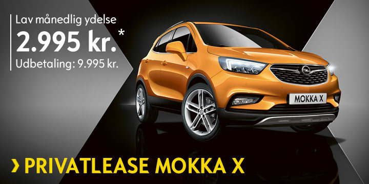 Privatleasing MOKKA X (HERO 1)